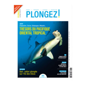 turtle_plongezn6